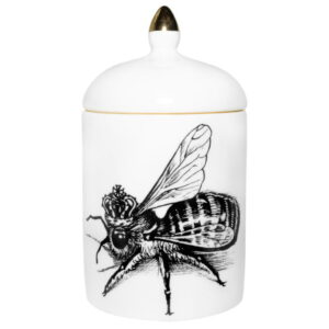 Queen-Bee-Cosy-Candle-684x684